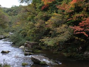 休暇村吾妻山ロッジの観光案内ページです。
