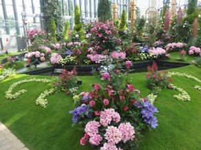 バラ祭♪・・・奇跡の星の植物館