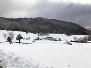 新雪新雪~♪