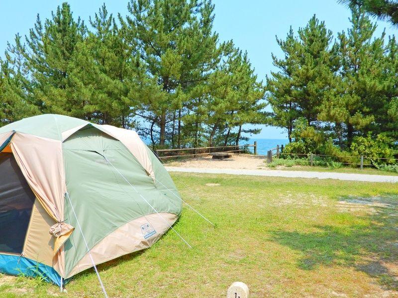 シーサイドキャンプ