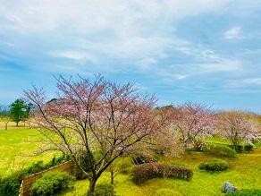 360° PANORAMAの自然を感じましょう!!