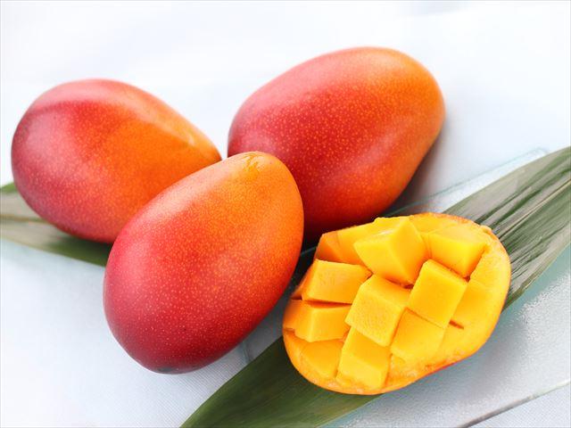 今年のマンゴーは甘さたっぷり