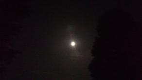 月が綺麗な夜です☽