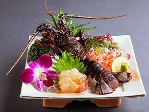 千葉県で伊勢海老漁解禁!新鮮な伊勢海老をご用意しています♪