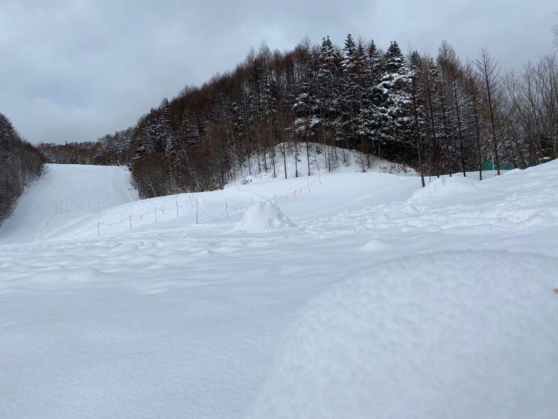 新雪降ってます♪