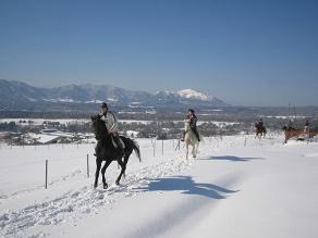 今だけ!雪上を走る乗馬体験(^^)/