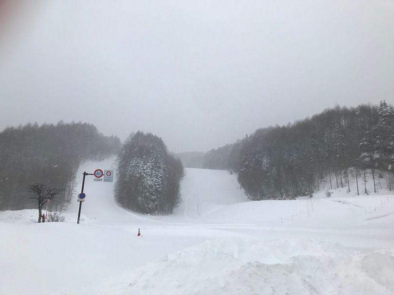 本日のスキー場情報と旅Qツアー