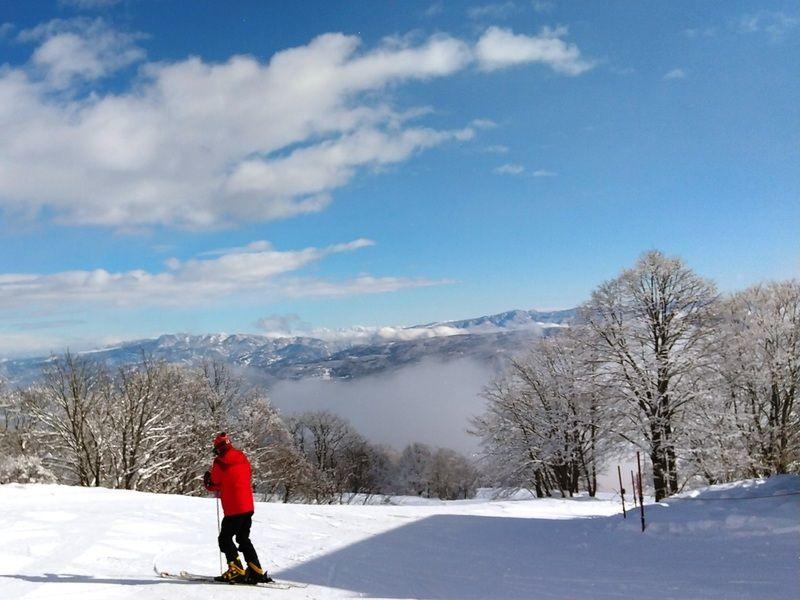 個性豊かなスキー場揃い♪Myokoスキーエリア