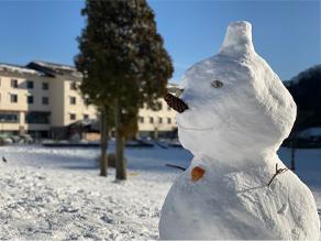 雪だるま出没大作戦 ・・・知ってる❓