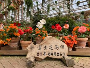 鳥と花の楽園 富士花鳥園