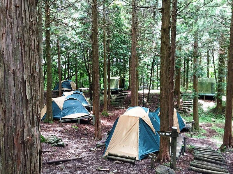 明日5月1日よりキャンプ場OPEN
