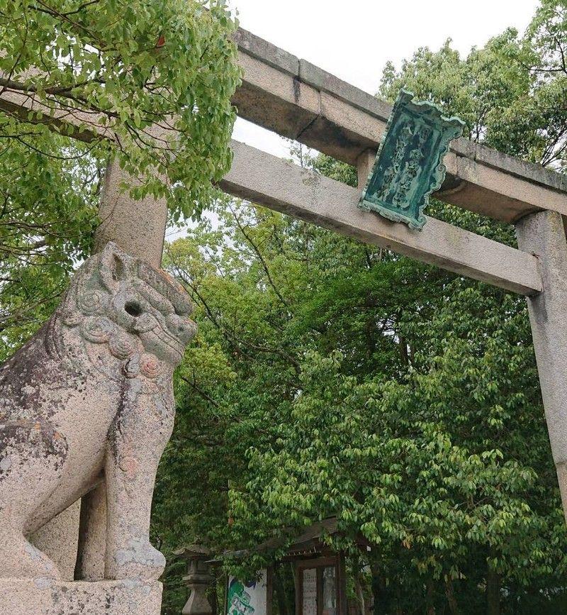 クスノキに囲まれた神社~大山祇神社~