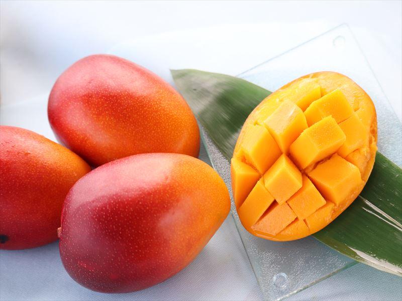 美味しいマンゴー販売しています♪