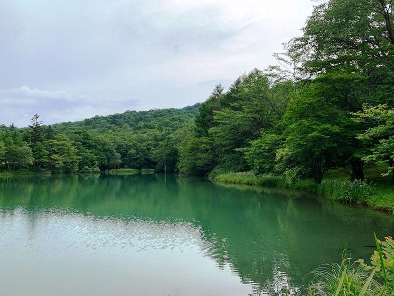 水鏡が美しい 芹沼池
