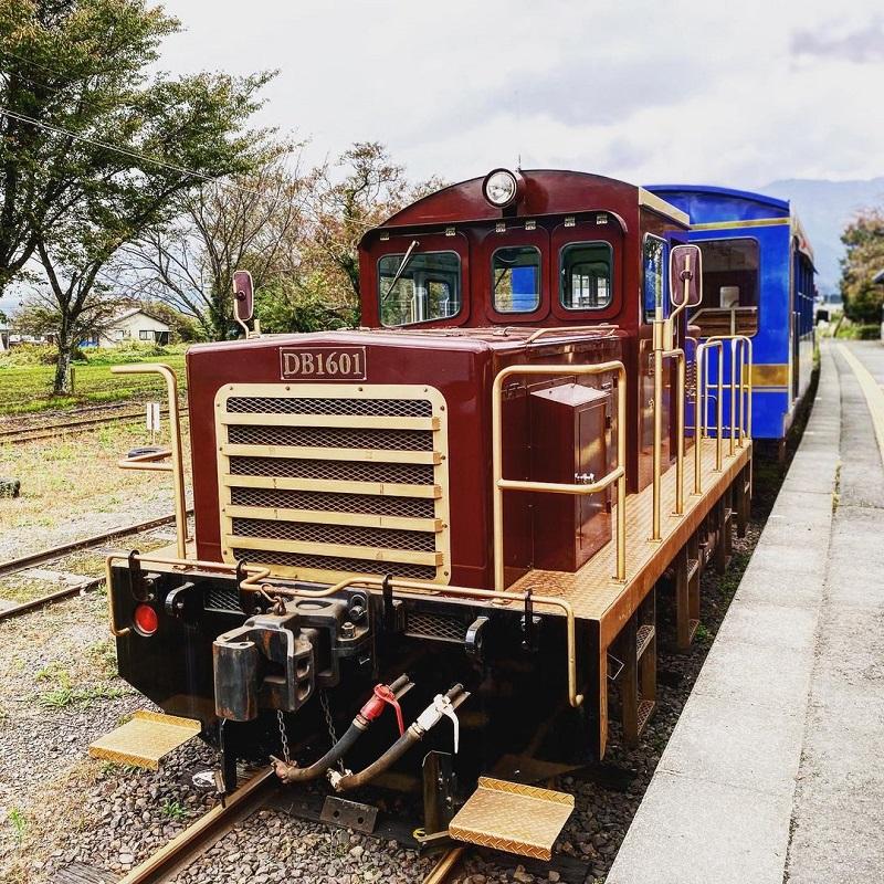 南阿蘇の夏『トロッコ列車』で楽しもう♪