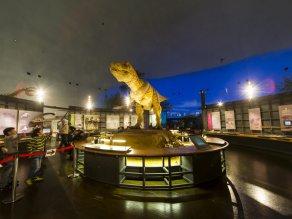 福井県立恐竜博物館臨時休館のお知らせ