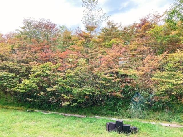 茶臼山の秋も間近です