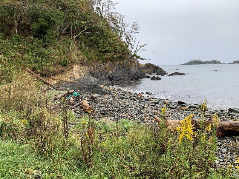 【SDGs】若木浜の清掃を行いました!