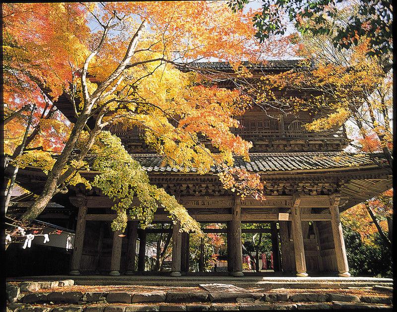 紅葉の永源寺と湖東三山の旅