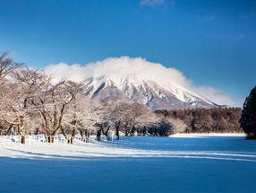 「おうち時間」も満喫!世界に誇る日本の伝統工芸品!