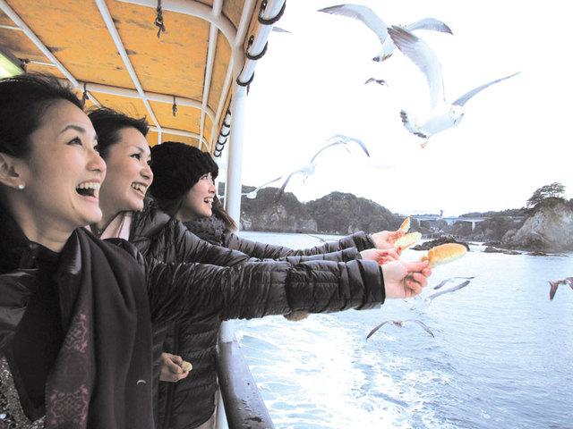 [【ウミネコ餌付け体験とクルージング】浄土ヶ浜観光遊覧船チケット付きプラン] 浄土ヶ浜遊覧船(周遊約40分)