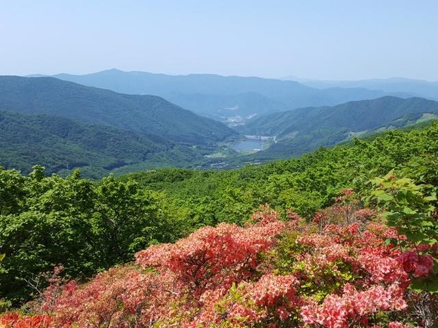 [【旅Q】ゆったりペースで歩く!ツツジとシャクナゲが咲き誇る春の五葉山登山ツアー~] 頂上からは三陸のリアス式を一望できます。