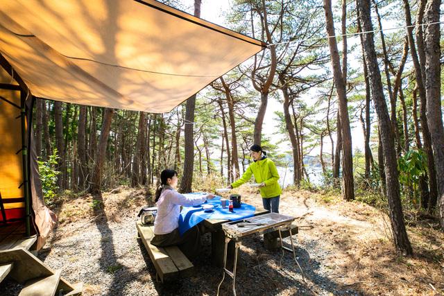 [アイランドキャンプ 食材はお持ち込み 手ぶらでキャンププラン] 木漏れ日が差し込み、日常を忘れて自然を楽しむ
