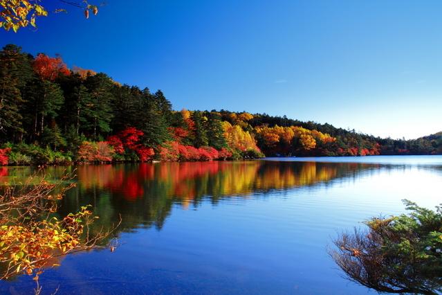 [1名でも料金アップなし【4泊5日】 ≪秋編≫のんびり連泊プラン] 秋深まり鮮やかな光景