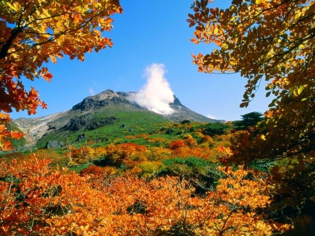 [【2連泊プラン】初秋の那須高原を楽しもう!!] 日本百名山 茶臼岳「姥ヶ平」の紅葉は早く、例年9月下旬より色づき始めます。