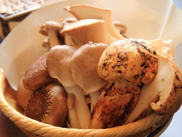 [【秋限定】松茸と嬬恋産きのこ盛の七輪焼き付き♪つまごいプレミアムビュッフェ] 【2021年・秋】秋の味覚「松茸」と嬬恋産きのこ盛り合わせの七輪焼き