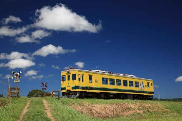 [【旅Qツアー】ローカル線に乗って、房総半島横断の旅※ツアーは2日目です。<出発日限定10月15日~、11月12日~>] いすみ鉄道(イメージ)