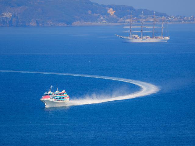 [【旅Qツアー】★催行決定★高速ジェット船で行く伊豆大島「椿」を見に行こう!<出発日3/10>] 伊豆大島へのジェット船