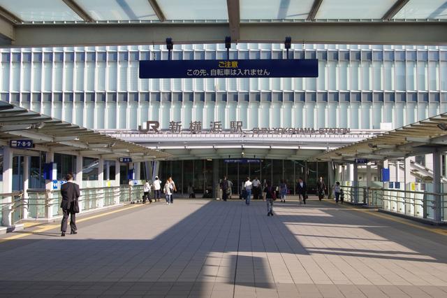 [【旅Qツアー】フェリーに乗って南房総へ!満開コスモスとトロッコ列車、大多喜城を巡る旅2日間] らくらく新横浜出発/解散の南房総ツアー!