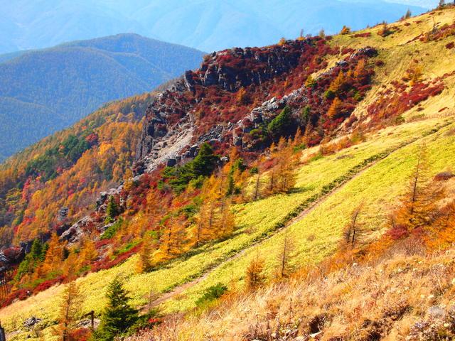[【観光ツアープラン:旅Q】山岳リゾート信州 山さんぽ美ヶ原と志賀高原] 美ヶ原からのアルプスの紅葉