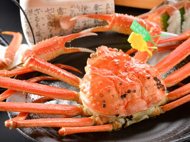 [【1日限定30食 】ブランド活蟹☆越前がに【極味コース】(茹で蟹 約350g)(H29.11.7~H30.3.22)] 茹でがには、ご夕食のお時間にあわせて茹で上げます。【極味コース】