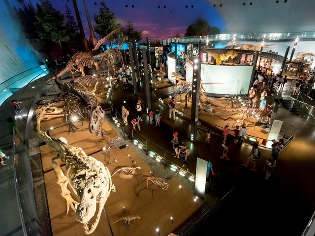 [【ファミリーにおすすめ】 人気チケットが付いてお得♪秋の恐竜博物館観覧券付宿泊プラン(H30.9/1~11/6)] 大迫力!恐竜博物館!