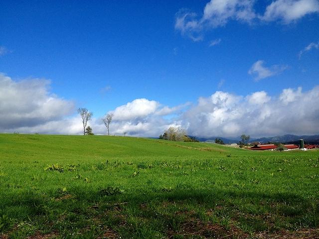 [【休暇村オリジナルロッジ型テント】手ぶらでキャンプ スタンダードinひるぜん2020] 蒜山高原の牧草風景、大山や蒜山三座の山々に囲まれ空気が美味しい