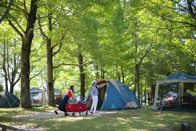 [オートサイトで手ぶらでキャンプ(スタンダード)inひるぜん2019] テントへ到着