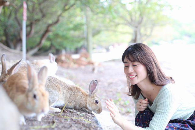[通常価格16,500円が10,000円!「ウサギ島」で気ままなひとり旅プラン] うさぎと癒しのひとときを・・・