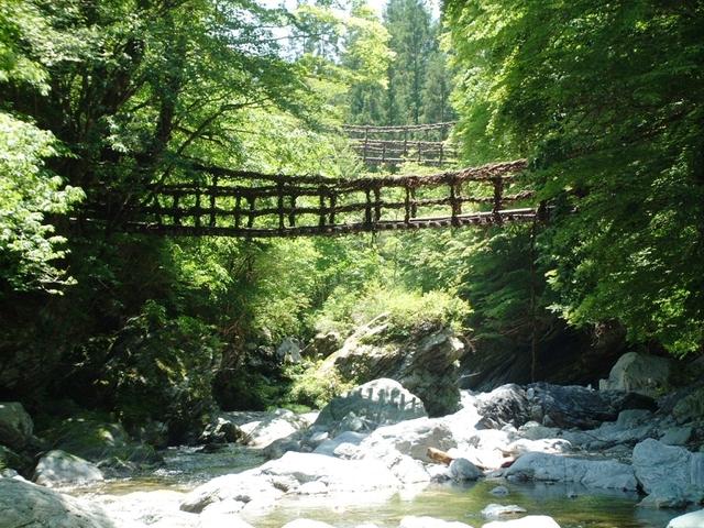 [【四国の秘境巡り】 観光バスでは行けない、奥祖谷の二重かずら橋・野猿を体験] 奥祖谷の二重かずら橋